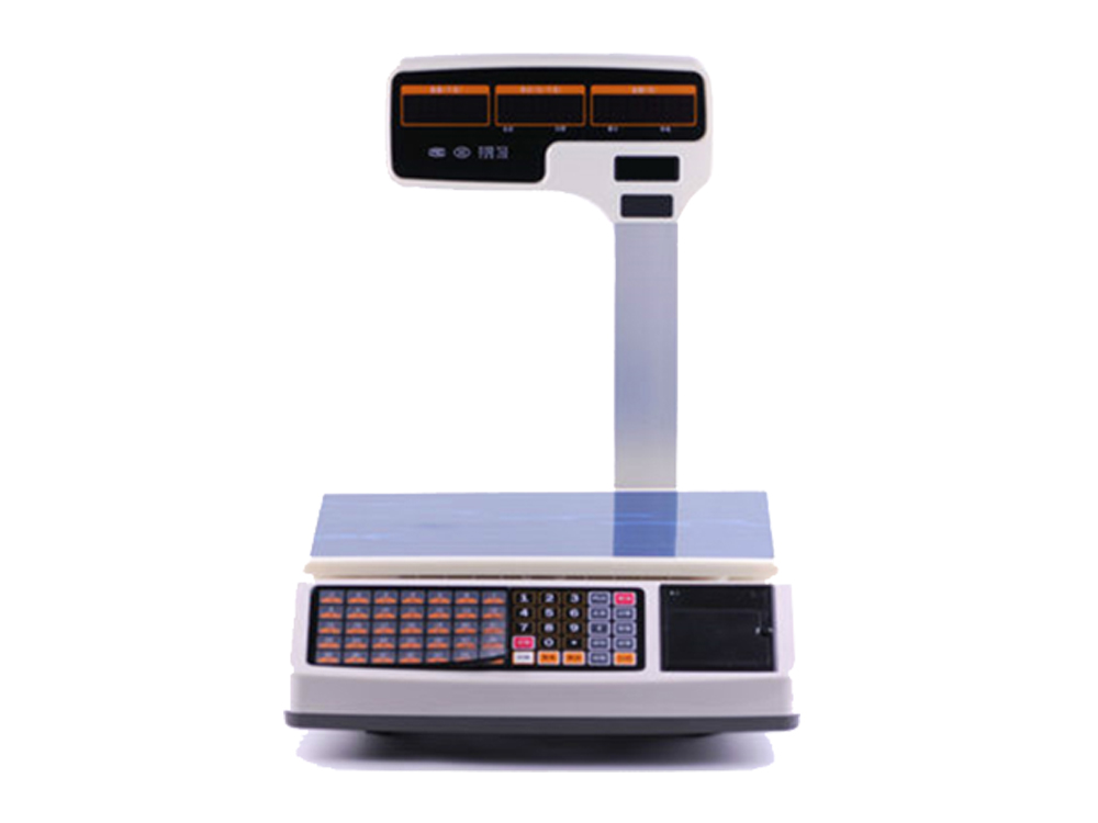 Weighing Scale With Printer HS-T30U